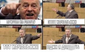 Жириновский - Мем про работу